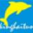 金海豚宝宝起名软件 6.02
