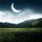 《野外月夜》桌面壁纸
